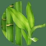 149_Bambuk Specjalistyczne środki kosmetyczne